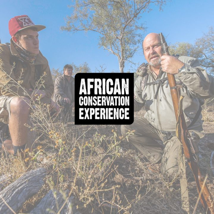African Conservation Experience | Heeding the call